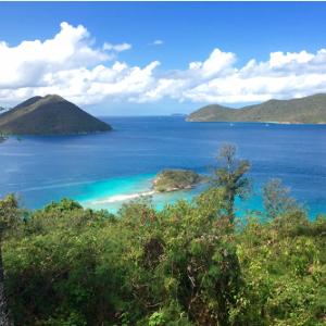 ダイレクトインベストメントグループ の 所在地 バージン諸島 の画像